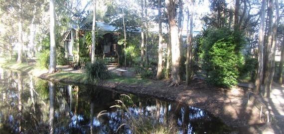 Dog Kennels Brisbane South East
